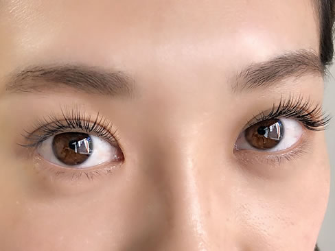 lucire eyelash(ルチーレアイラッシュ)/市ヶ谷のロゴ